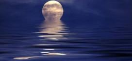 moonlight-coolphotos2528122529
